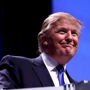 Donald Trump: Wie man seinen Karriereweg wählt
