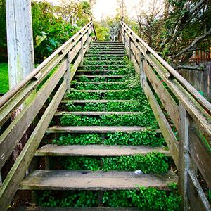 Wie Du Erfolg Schritt für Schritt näher kommst